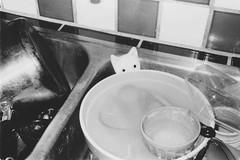 (Ashley Cozzetto) Tags: blackandwhite kitchen portland sink