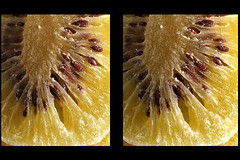 IMG_5800  (parallel 3D - for Hasbro My 3D) (yoshing_BT) Tags: stereophoto stereophotography 3d stereo stereoview stereograph parallel driedfruit kiwifruit    parallelview  parallel3d  my3d   hasbromy3d