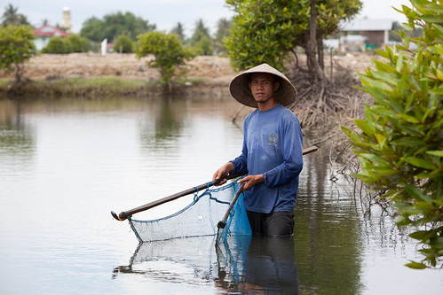 Fishing in shrimp ponds. Aceh, Indonesia. Photo by Mike Lusmore/Duckrabbit, 2012