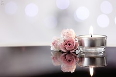 Candle ! (HadeelAlhamid) Tags: flower relax photography candle hadeel   alhamid  hadeelalhamid