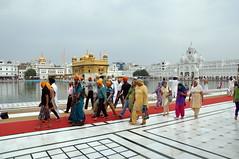 India - Punjab - Amritsar - Golden Temple - 218 (asienman) Tags: india sikh punjab amritsar gurudwara goldentemple harmandirsahib asienmanphotography