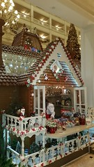 20151229_212109 (arctic_whirlwind) Tags: christmas disney disneyworld gingerbreadhouse waltdisneyworld grandfloridian