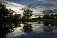 Rural Pond Sunburst II (Notley) Tags: trees sky sun lake reflection clouds rural spring pond outdoor reflect missouri april sunburst serene cloudysky 2016 10thavenue notley notleyhawkins coopercountymissouri missouriphotography httpwwwnotleyhawkinscom notleyhawkinsphotography