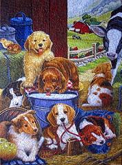 Puppy Holiday (Marietta Wood Works) Tags: jigsawpuzzle