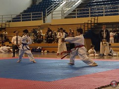 stefanou_15_5_2016_knockdown_124