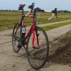 DSC_0015-1 (Craftworks70) Tags: paris bike cx most elite fp pina wiki castelli noordholland fsa fp6 pinarello bicicletta onda fizik arione northwave cicli continentalultrasport 64cm shimanors80 6ft6 fulcrumracingquattro 5211 46hm3k