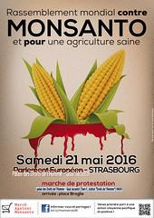 #MaMStrasbourg #MaM2016 : 21 mai 2016 Marche contre Monsanto et Consorts  Strasbourg (Amis de la Confdration Paysanne Alsace) Tags: fairtrade monsanto ogm foodsafety pesticides biotechnologie sansogmgmofree falsemarket freetradeisgenetrade marchagainstmonsanto marchecontremonsanto sansgylphosate anethicaleu thenewuscolonisation nongmomaismaizecorn mam2o16 notipptppnorceta