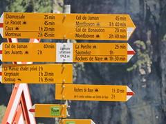 DSCN0406 (keepps) Tags: mountains alps schweiz switzerland suisse vaud rochersdenaye