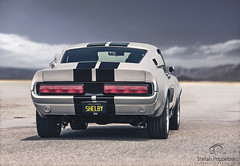 1967 Ford Mustang Shelby GT500  [Explored] (Stefan Poppelaars Automotive Photography) Tags: 1967 ford mustang shelby gt500 eleanor desert dunes national park america nevada california las vegas natural light coast west valley death sand american v8 muscle car mesquite gt350 westcoast