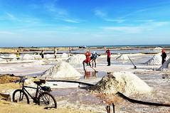 . @Regrann from @fotomilton - SALINAS DE MANAURE. Artesanalmente, los Wayuu siguen con la tradición de las charcas y con la ayuda del viento y el sol cosechan la sal. En Manaure se procesa el 65% de la sal que produce Colombia. #colombianiando #instaghesb (EnMiColombia.com) Tags: from las en sol del de se la los colombia foto y viento el que salinas fujifilm produce con sal 65 tradición ayuda siguen manaure wayuu charcas artesanalmente procesa communityfirst igers galeriaco igerscolombia instagrames fujixseries fujistas instaghesboro igersbogota worldclassshots igcolombia igsharepoint waycoolshots igglobalclub igbogota fujixclub regrann fujifeed colombianiando hallazgosemanal icucolombia primerolacomunidad cosechan colombiagrafia colombiagreatshots fotomilton superhubsshots fujifilmcolombia fotoconcursoagendadelmar