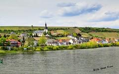 Scenic Rhine-0332 (glennrossimages) Tags: church river germany de village vineyards rhine rheinlandpfalz nierstein