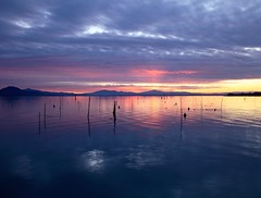 Un tramonto d'inverno - A winter sunset (da.geli) Tags: sunset sky italy lake water couds msm umbria trasimeno impressedbeauty awintersunset mygearandme mygearandmepremium mygearandmebronze mygearandmesilver mygearandmegold mygearandmeplatinum untramontodinverno