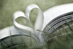 The things you do for love... (Tina M89) Tags: texture heart bokeh cliche eveninglight greengrass hcs bookheart