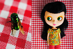 The picnic fly