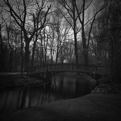 The park (Massimo Margagnoni) Tags: world park trip trees blackandwhite bw parco white black art 6x6 nature amsterdam digital canon landscape poetry solitude alone photographer digitale natura hasselblad dreams 5d poesia viaggi nero paesaggio olanda biancoenero massimo 2012 mkii mondo oland naturepoetry absoluteblackandwhite bestcapturesaoi margagnoni