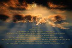Evangelio segn San Juan 17,20-26 Obra Padre Cotallo
