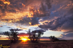 Some Kind of Wonderful (southern_skies) Tags: trees sunset colour clouds australia queensland darlingdowns pepperina