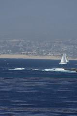 Monterey (Niki Gunn) Tags: california ca monterey pentax may montereybay 2012 k5 loverspointbeach 80320mm fa80320mm smcpentaxfa80320mmf4556 fa803204556