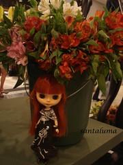 Aisha no meio das flores!!
