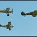 Hawker Formation