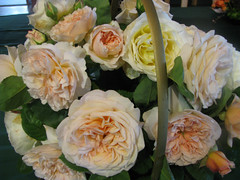 Basket of David Austin roses