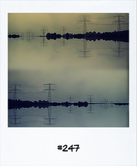 """#DailyPolaroid of 1-6-12 #247 • <a style=""""font-size:0.8em;"""" href=""""http://www.flickr.com/photos/47939785@N05/7342865528/"""" target=""""_blank"""">View on Flickr</a>"""