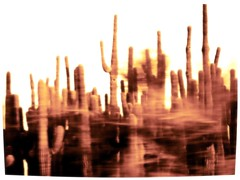 Apparition (taranoel) Tags: cactus motion blur forrest apparition ilikesepia fromtreesnearby orsomedistantmemory
