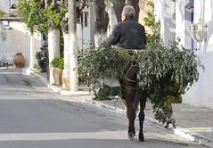 Kroustas, (Jean-Louis POTIER) Tags: grece crète kroustas