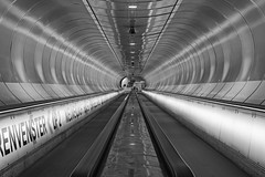 Wilhelminaplein underground (monochrome) (R. Engelsman) Tags: wilhelminaplein rotterdam underground metro tube architecture lines monochrome blackandwhite infrastructure symmetry geometric architectuur canon ret abstract tunnel subway 010 city roltrappen escalator escalators roltrap