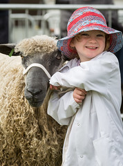 Sheep (Friday) - Devon County Show 2016 (dorsetbays) Tags: show county sheep farm farming devon exeter lamb judge farmer judging agriculture ram westpoint agricultural 2016 sheepjudging devoncountyshow devonshow agriculuturalshow devonshow2016 devoncountyshow2016