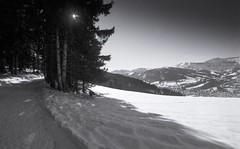 Combloux, B&W, 19 (Patrick.Raymond (2M views)) Tags: alpes haute savoie combloux montagne neige argentique tmax