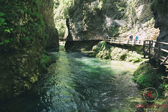 2174 (Bethie Inthesky) Tags: bridge green nature waterfall outdoor hiking canyon slovenia bled gorge vintgar