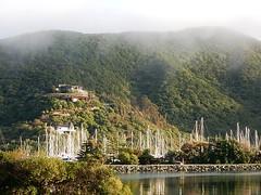 Hidden Yachts (mikecogh) Tags: sunlight mist hills hidden yachts masts waikawa