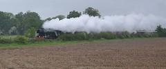Flying Scotsman (hapsnaps) Tags: weather speed spring famous engine hampshire steam steamengine flyingscotsman 2016 anoraks railwayengine recordbreaker timesgoneby waitingintherain hapsnaps somewherenearromsey