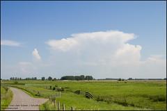 Thunderstorm above Breda - Simonshaven (Mark van der Meer) Tags: sky cloud storm nature field grass weather clouds river landscape outdoor nederland thenetherlands delta thunderstorm grassland thunder spui bui cumulonimbus zuidholland onweer rivier onweersbui simonshaven hetspui voorneputten nissewaard