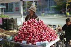 (+quinzilla) Tags: film wisconsin madison radish nikonfe2 danecountyfarmersmarket
