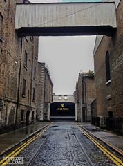 Guinness brewery at St. James's Gate, Dublin, Ireland (okaystephanie) Tags: travel ireland dublin heritage tourism beer logo gate industrial factory guinness cobblestone company brewery harp brand stout stjamessgate
