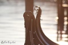 IMG_4000 (Namast Mari) Tags: venice venezia venise veneta wins beniseu albunduqia vu~enetsu~ia venetsiya canali canal calle love amore romantico romantic romantica romantique gondola gondole sea mare veneto italia italy art arte cultura culture luoghi architettura allaperto holidays vacanze vacances