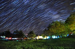 Fushoushan Farm  (Vincent_Ting) Tags:            maple maples     taiwan formosa autumn  nikon nature water sky   cosmos vincentting  blussky clouds  galaxy milkyway startrails