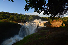 The mighty Murchison Falls (supersky77) Tags: murchison nurchisonfalls murchisonfallsnationalpark uganda nile nilo river fiume cascata waterfall sunset tramonto africa