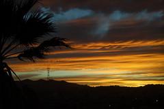 Tonight's sunset #bernalwood (spieri_sf) Tags: bernalwood