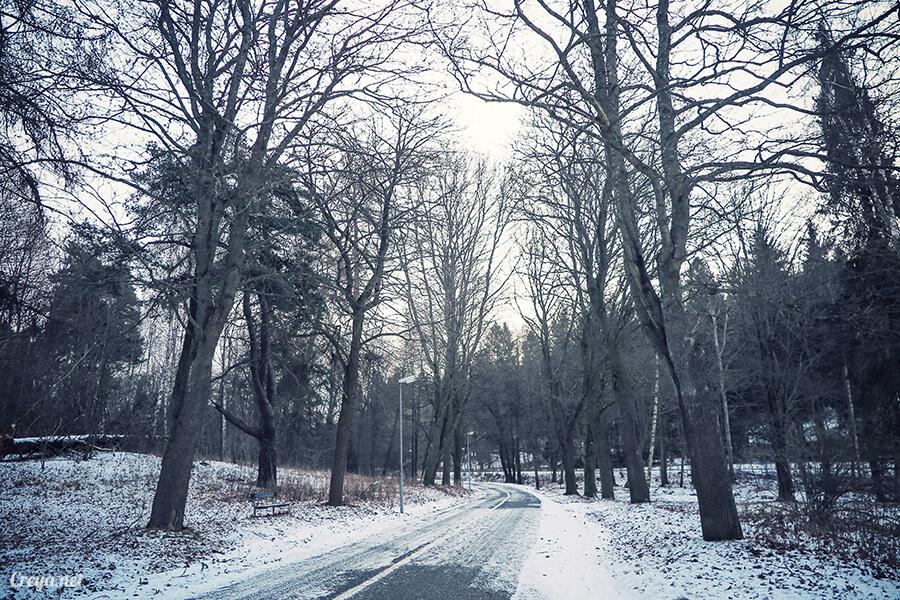 2016.06.23 ▐ 看我歐行腿 ▐ 謝謝沒有放棄的自己,讓我用跑步遇見斯德哥爾摩的城市森林秘境 13