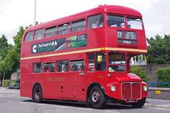 London Transport RM1005 (2) (bernardf) Tags: rm londontransport heritagebuses rmroutemaster busscene2016 hantsdorset100