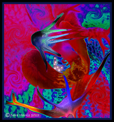 Auras - Digital Art 8050 (saraharris.sh64) Tags: orchid flower nature digitalart digitalmanipulation auras vividcolours vividimagination awardtree