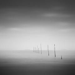* 8 & 1/2 poles * (^soulfly) Tags: longexposure blackandwhite seascape monochrome minimal simplicity malaysia southchinasea mersing canongear eflens bwnd110