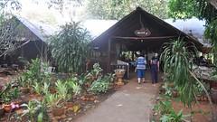 Wang Pho Restaurant, Burma Railway Tour (David McKelvey) Tags: thailand restaurant 2012 wangpho