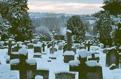 (paul messerschmidt (europe)) Tags: uk winter england snow tree church cemetery graveyard parish twilight surrey churchyard elmer gravestones snowcovered 2010 leatherhead 12010 stmaryandstnicholas fetchamdowns hawkshill paulmdtbest stmarystnicholas 20100203 elmerworks film20100203