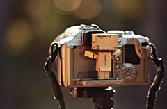 Danbo loves photography! (oLiV3r.G) Tags: canon toy nikon bokeh panasonic e series f35 fz50 danbo 550d revoltech 75150mm danboard
