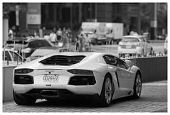 Lamborghini (Delytayan Third) Tags: bw taiwan taipei