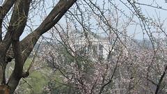 CIMG8765 (Comrade Anatolii) Tags: northkorea pyongyang   pjngjang